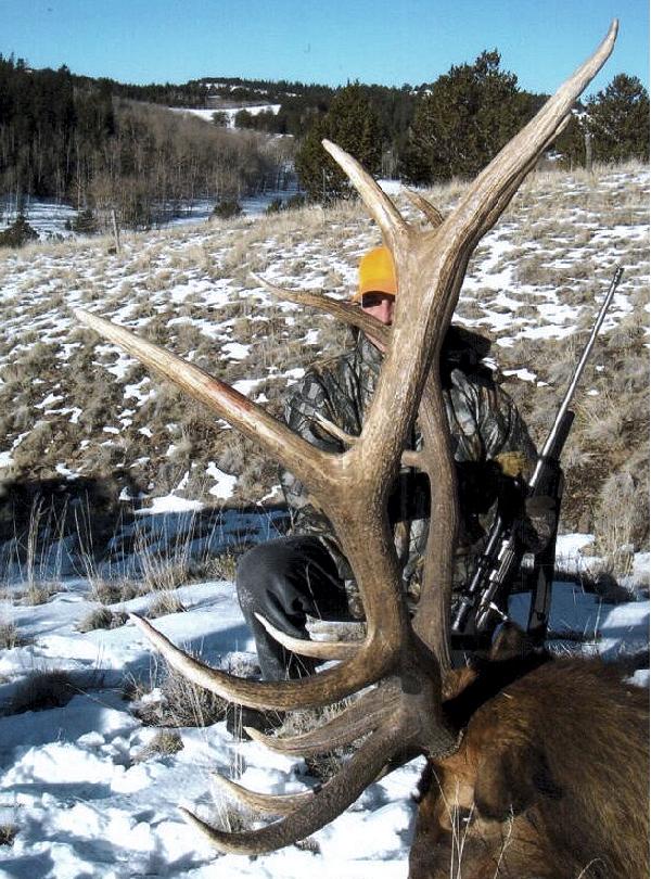 Click for Guaranteed Elk